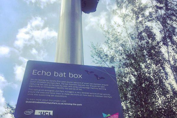 Echo Box signage