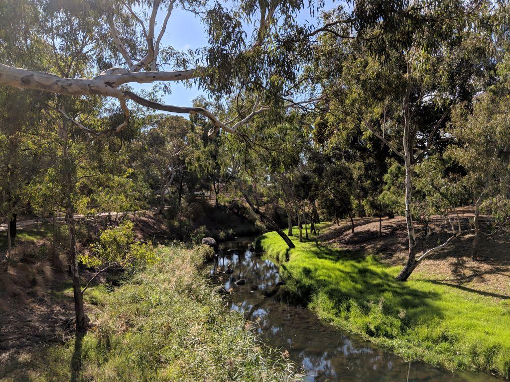Merri_Creek_at_Coburg_Lake_Reserve_Q1922004_20190420b.1024