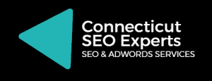 Fast SEO Techniques Used For Clients