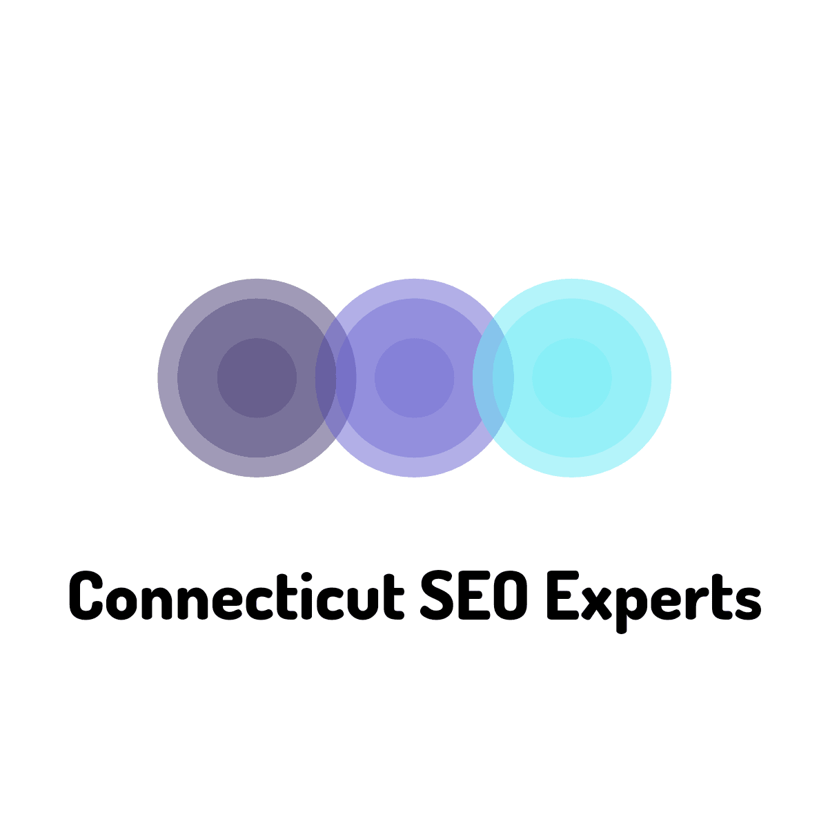 SEO Beginner's Guides By Search Optimization Experts