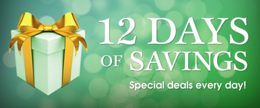 Connecting Point's 12 DAYS OF SAVINGS