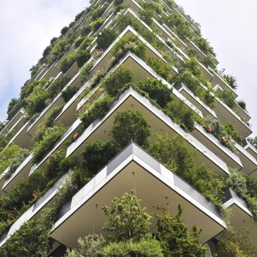 La incorporación de naturaleza a nuestras ciudades