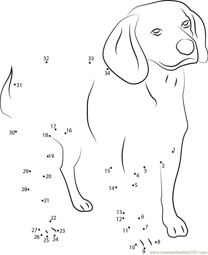 Beagle English Purebred Dog dot to dot printable worksheet