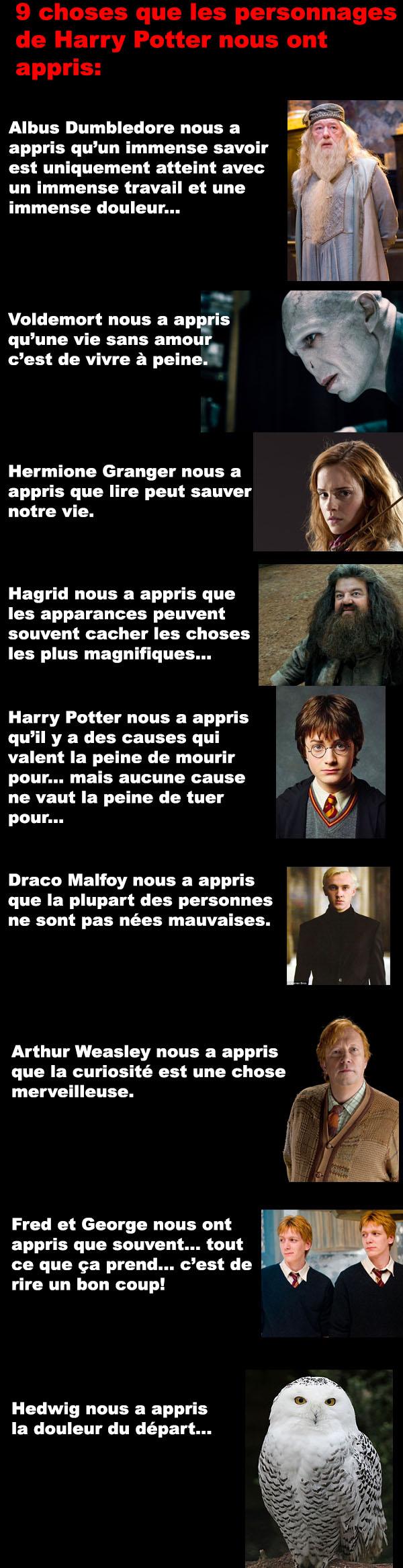 Les Personnages D Harry Potter : personnages, harry, potter, Choses, Personnages, Harry, Potter, Appris
