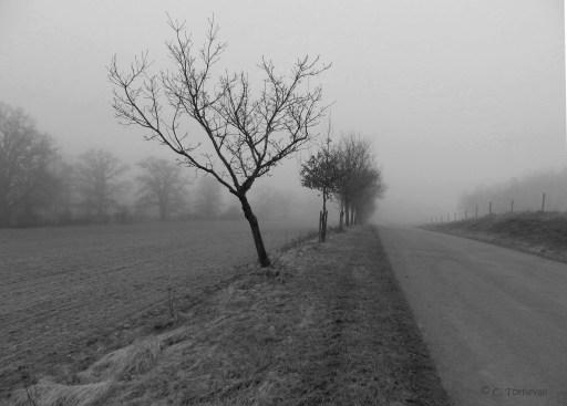Stillhet väg mot stidsvig svartvit