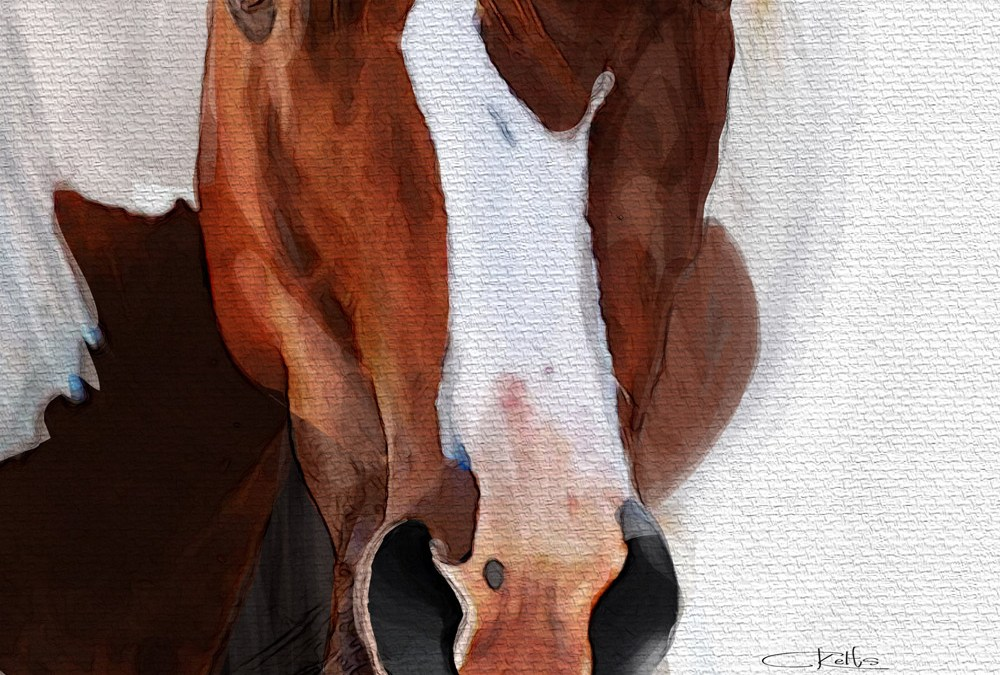 Red Painted Horse