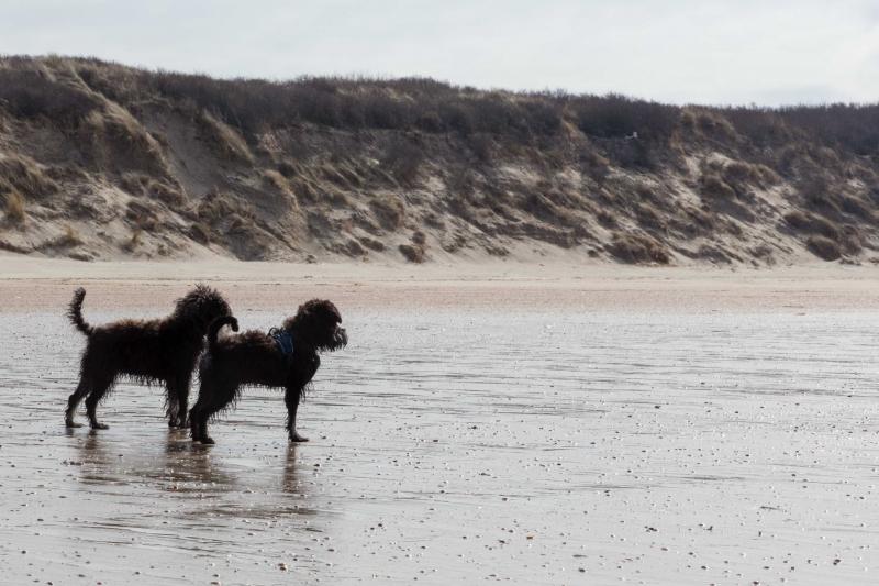 ConniesBoekenblog.nl-JMF-20180324-0114