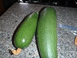 Garden, Zucchini, Connie Cockrell