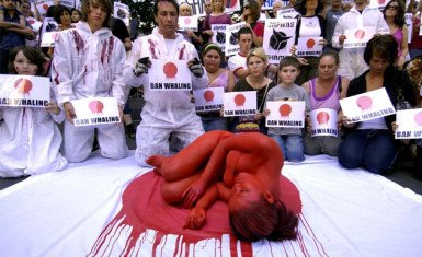 Protesta en Japón 2