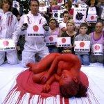 protesta contra la cacería de ballenas en Japón