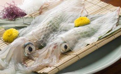 calamar de yobuko