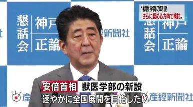 Shinzo Abe en el escándalo de la escuela veterinaria