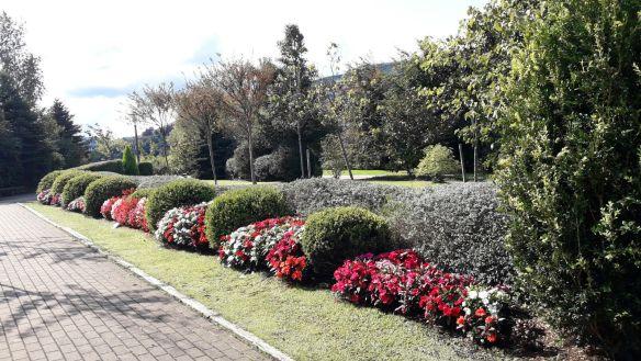 Jardin Botánico 6