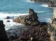 Foto Roque de Morán