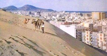 Camellos y dunas de Las Palmas