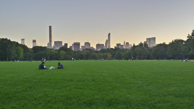 Atardecer en Central Park Great Lawn