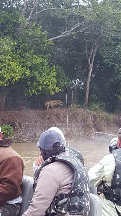 viajar al pantanal del estado de Mato Grosso