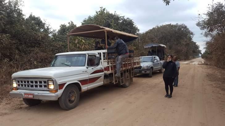 viajar al pantanal de mato grosso