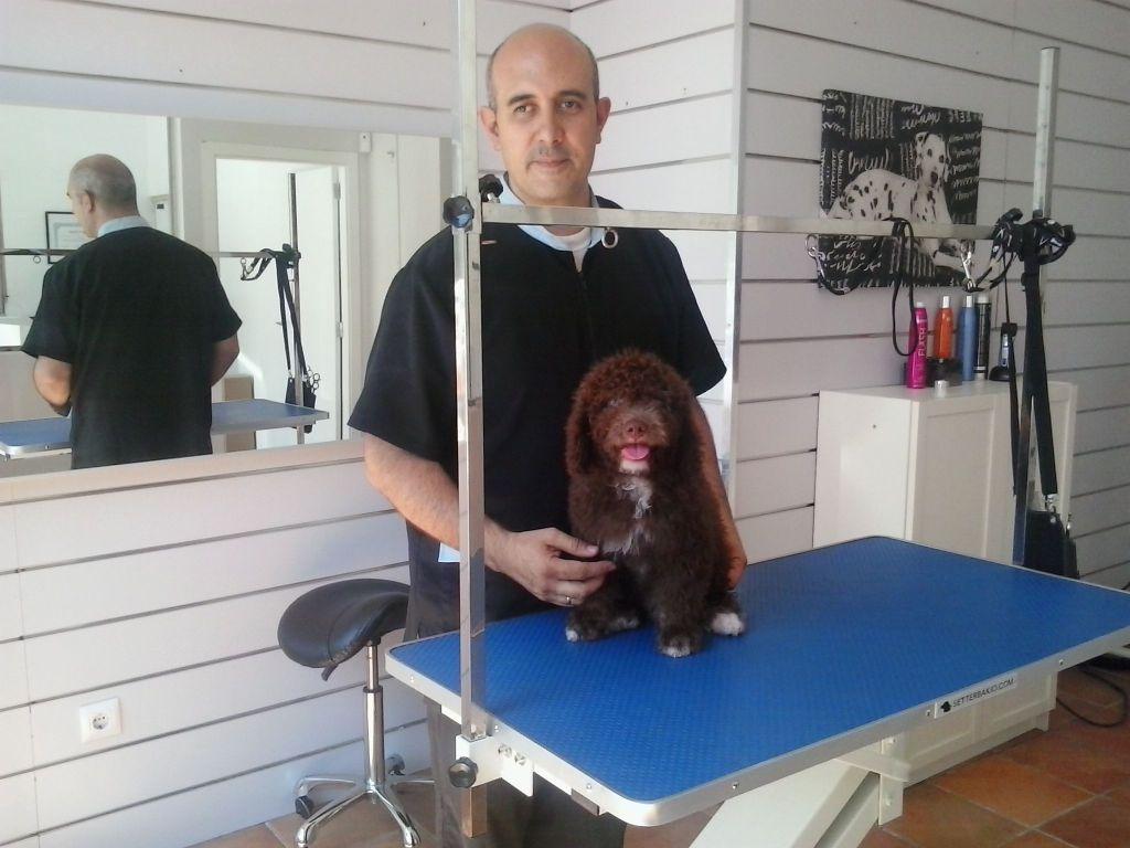 cachorro de perro de aguas con Alex Moll