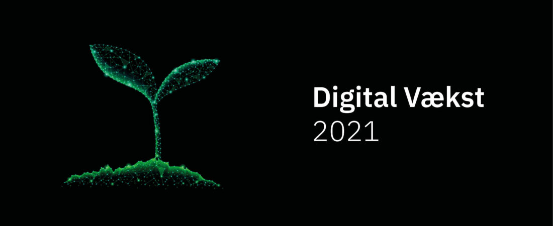 Digital vækst 2021