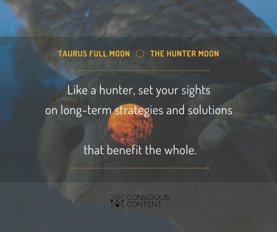 Owl hunting from a night sky | Full moon in taurus | Hunter moon | like a hunter set your sights on long-term strategies and solutions that benefit the whole | Conscious content