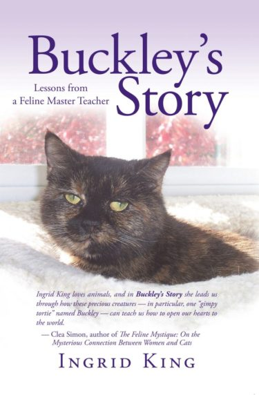buckleys-story-ingrid-king