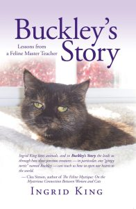 Buckley's Story Cover