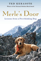 merles-door