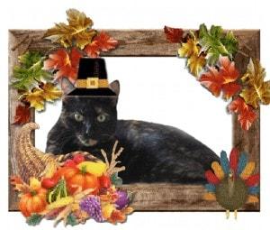 Allegra Thanksgiving