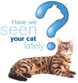 Have we seen your cat lately?