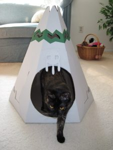 cat house playhouse for cats cardboard house for cats