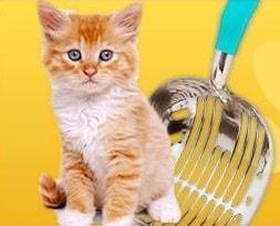 Durascoop cat
