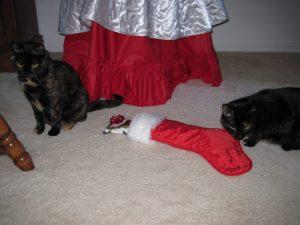 cats-christmas-stocking
