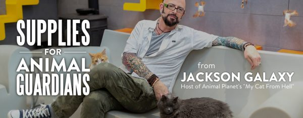 Meet cat daddy jackson galaxy 39 s furry family members for Jackson galaxy shop