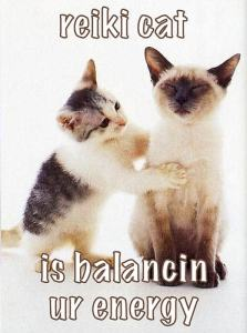 Reiki cat energy healing