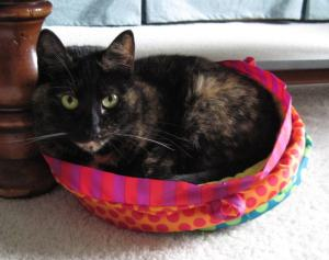 tortoiseshell cat in pink cat bed