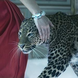 L'Odysee de Cartier commercial