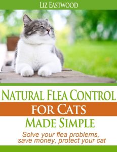 natural_flea_control_for_cats