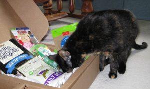Allegra with Pawalla box