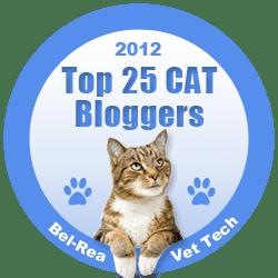 top_25_cat_blog