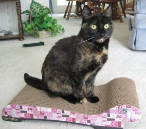 Review and giveaway kittyblock scratcher provides for Chaise lounge cat scratcher
