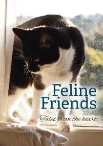 Feline_Friends