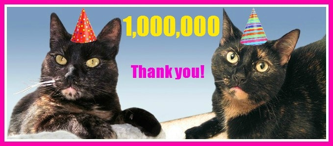 The Conscious Cat Passes One Million Page Views