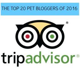 Tripadvisor-top-20