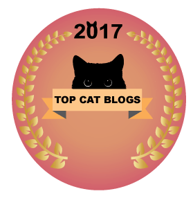 top-cat-blog
