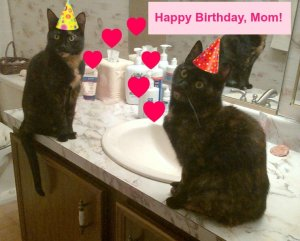 Birthday_cats