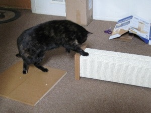 sisal_scratching_post
