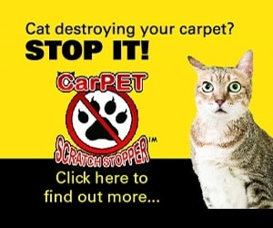 carpet_scratch_stopper