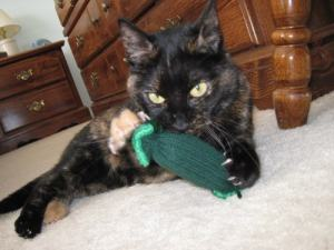 cat_playing_with_catnip_toy