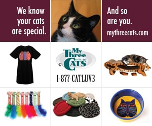 cat_accessories_furniture_toys